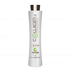 Bio Coconut Collagen Discipline - 1000 мл.